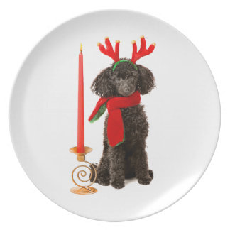Christmas Black Toy Poodle Dog Dressed as Reindeer Dinner Plate
