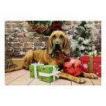 Christmas - Bloodhound - Penney Poster