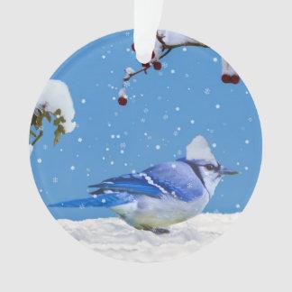 Christmas, Blue Jay Bird and Snow
