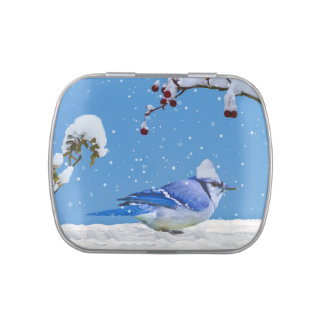 Christmas,  Blue Jay Bird and Snow Jelly Belly Candy Tin