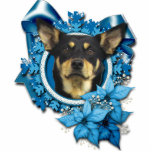 "Christmas - Blue Snowflake - Australian Kelpie Cutout<br><div class=""desc"">This is a beautiful Christmas holiday design called Blue Snowflake featuring an Australian Kelpie dog I have photographed.</div>"