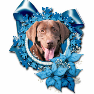 Christmas - Blue Snowflake - Labrador - Chocolate Photo Sculptures