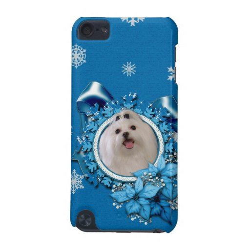 Christmas - Blue Snowflakes - Maltese iPod Touch (5th Generation) Cases