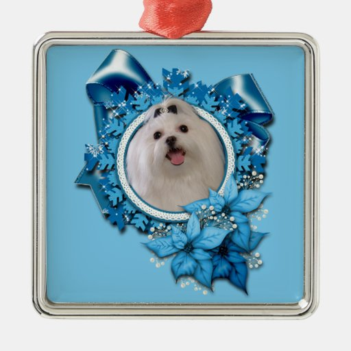 Christmas - Blue Snowflakes - Maltese Ornaments