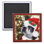 Christmas Boston terrier 2 Inch Square Magnet