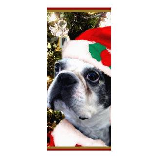 Christmas Boston Terrier dog Custom Rack Card