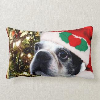 Christmas Boston terrier Lumbar Pillow