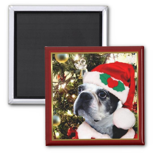 Christmas Boston terrier Magnet