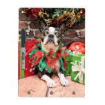 Christmas - Boston Terrier - Natty Dry Erase Whiteboard