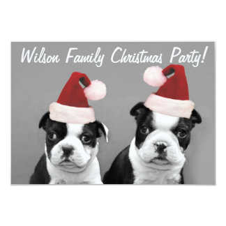 Christmas Boston Terrier puppies 3.5x5 Paper Invitation Card