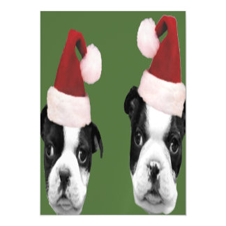 Christmas Boston Terrier puppies Magnetic Invitations