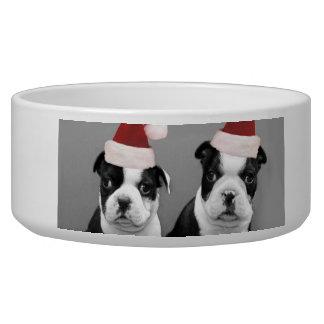 Christmas Boston terriers Bowl
