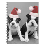 Christmas Boston terriers Journals