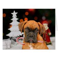 Christmas Boxer dog Big Greeting card