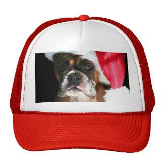 Christmas Boxer Dog Mesh Hats