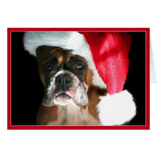 Christmas Boxer dog Notecard Greeting Cards
