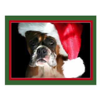 Christmas Boxer Dog postcard