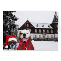 Christmas Boxer Dogs greeting card