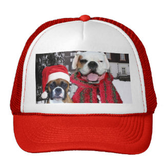Christmas Boxer Dogs hat