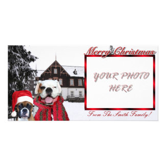 Christmas Boxer Dogs Photocard Photo Cards