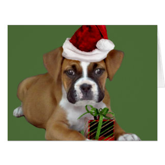 Christmas Boxer puppy Card