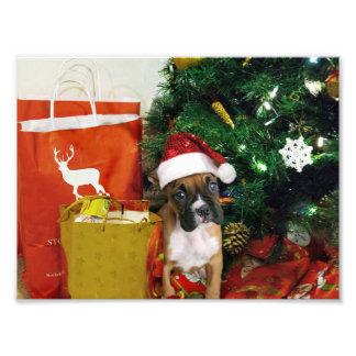 Christmas boxer puppy photo art