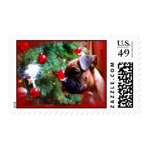 Christmas boxer puppy postage