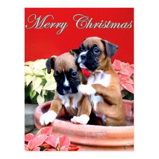 Christmas boxer puppy postcard