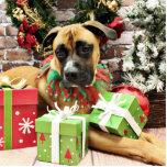 Christmas - Boxer - Vinny Photo Sculpture