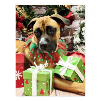 Christmas - Boxer - Vinny Postcard