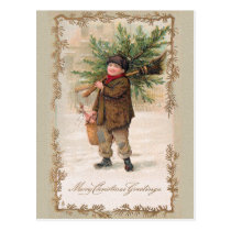 CHRISTMAS boy with Xmas trees Postcard