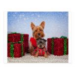 Christmas Buddies Postcard
