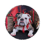 Christmas - Bulldog - Delilah Jelly Belly Candy Tins
