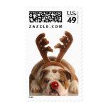 Christmas Bulldog Postage Stamp