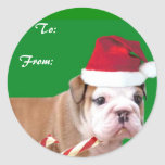 Christmas bulldog puppy gift tags classic round sticker