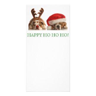 Christmas Bulldogs Postcard