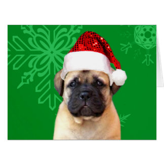 Christmas Bullmastiff puppy Cards