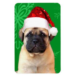 Christmas bullmastiff puppy magnet