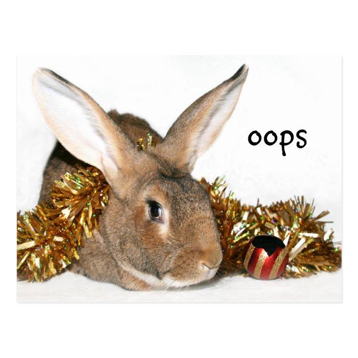 Christmas bunny boo boo postcard