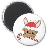 Christmas Bunny Magnets