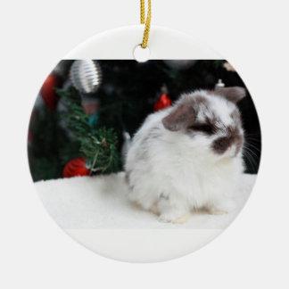 Christmas Bunny Ornaments