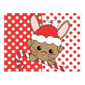 Christmas Bunny Post Cards