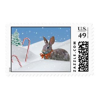 Christmas Bunny Postage Stamp