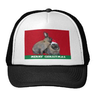 Christmas Bunny Rabbits Santa Hat Red