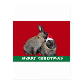 Christmas Bunny Rabbits Santa Hat Red Postcard