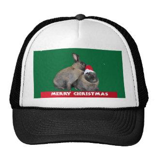 Christmas Bunny Rabbits with Santa Hat New Year