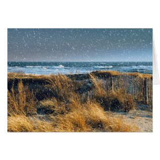 Christmas by the seashore Card