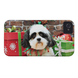 Christmas - CabichonPoo - Bandit iPhone 4 Case-Mate Cases
