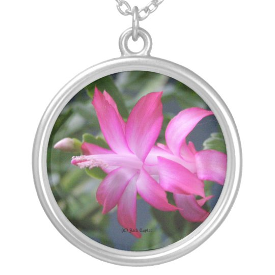Christmas Cactus #01 Silver Plated Necklace