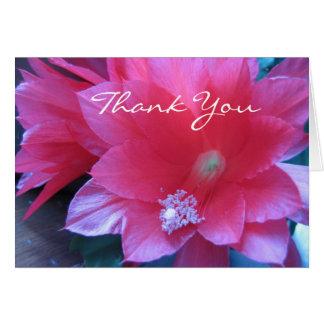 Christmas Cactus Flowers Card